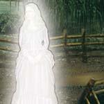 Victorian Mysteries: La Dame